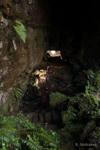 Coolarkin Cave